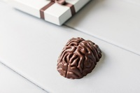 Шоколадный мозг